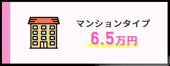 マンションタイプ 6.5万円